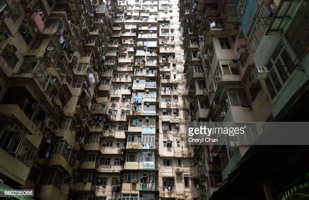 Concrete Jungle, Hong Kong