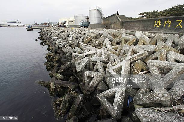 Concrete made tetrapods are pictured along the harbour in order to absorb the power of waves on March 3 2005 in Numazu Shizuoka Prefecture Japan The...