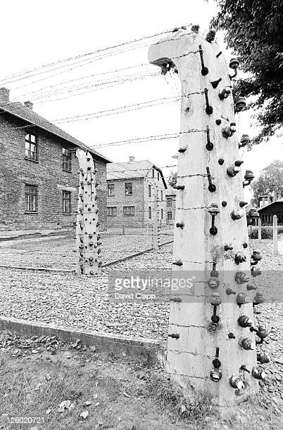 concrete post with electric fencing, birkenau concentration camp, auschwitz, poland - birkenau stock pictures, royalty-free photos & images