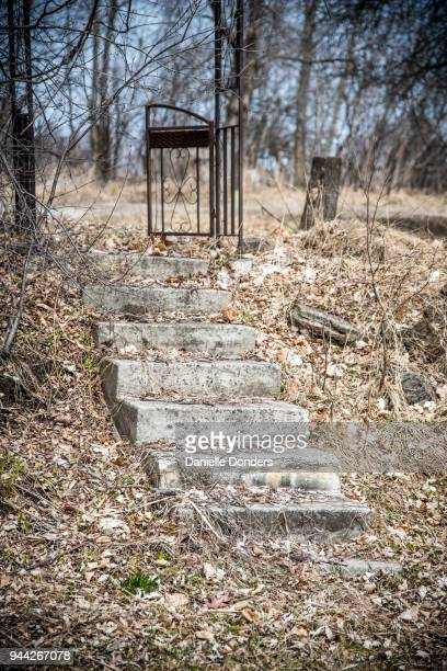 Concrete steps to a gate leading nowhere