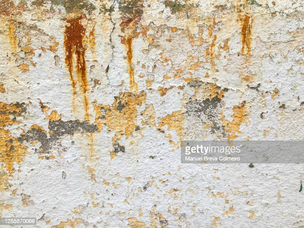 concrete wall - humid stock pictures, royalty-free photos & images