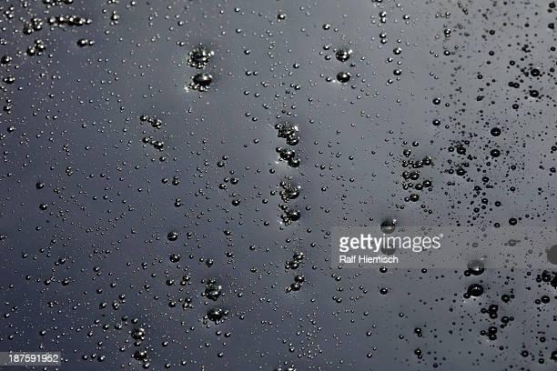 Condensation on a black background