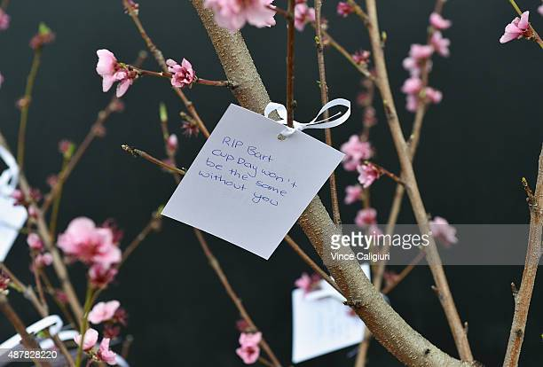 Condolence messages are placed on a memorial tree during the public memorial for Bart Cummings at Flemington Racecourse on September 12 2015 in...
