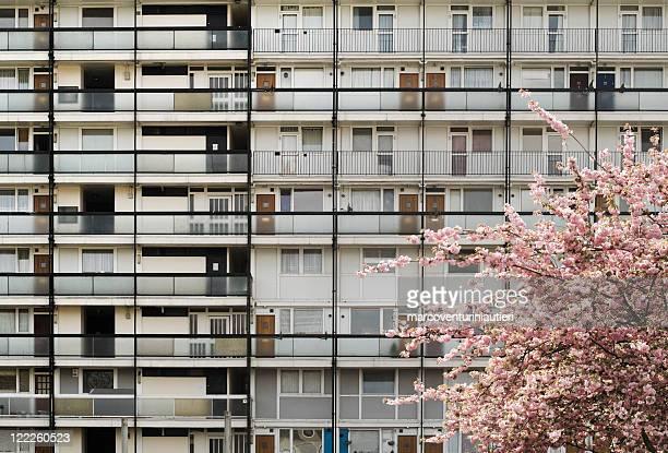 Condominio popolare - Residential flats