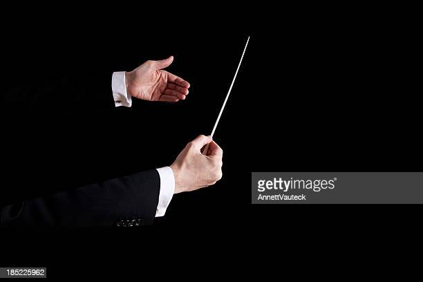 Conductor using his hands to orchestrate