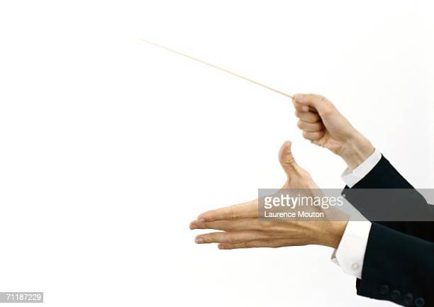 conductor's hands holding baton - maestro stock photos and pictures