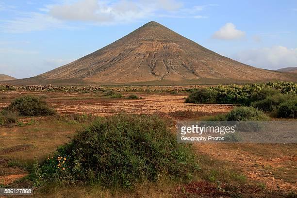 Cone volcano near La Oliva Fuerteventura Canary Islands Spain