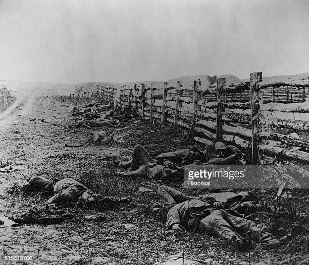 Confederate soldiers killed during the Battle of Antietam lie along a dirt road near Hagerstown Pike | Location Near Hagerstown Maryland USA