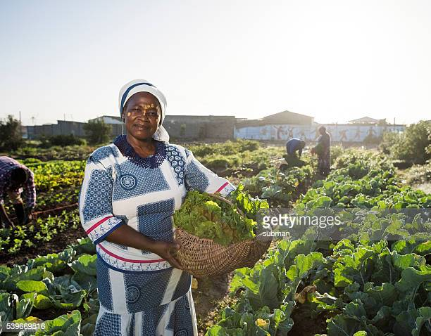 Confident African woman in vegetable garden