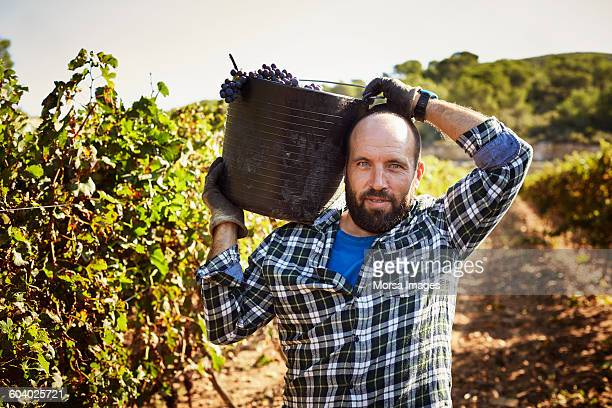 Confident farmer carrying container in vineyard