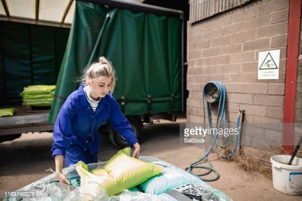 trabalhador fêmea confiável - girl power provérbio em inglês - fotografias e filmes do acervo