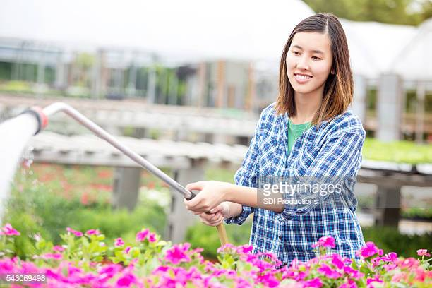 Confident nursery employee uses sprayer to water flowers