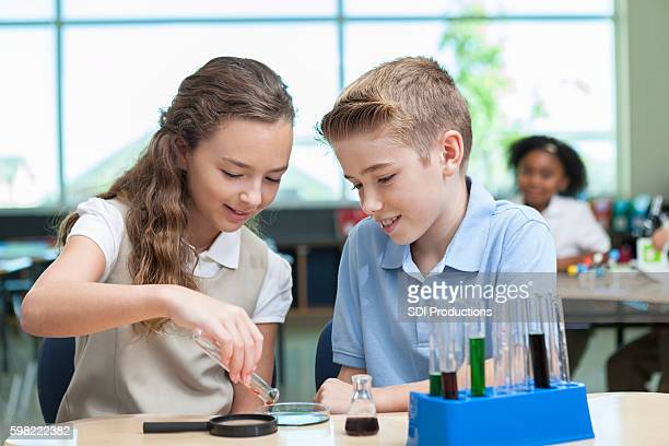 Confident private school students work on chemistry assignment