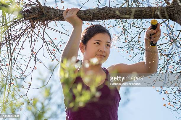 Confident, Teenaged, Mixed-Ethnic Girl Pruning Tree Branch with Hand Saw