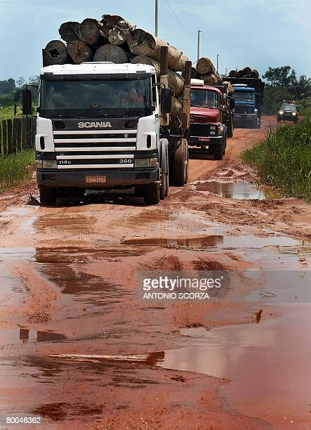Confiscated logs are taken across the Amazon rain forest to a port in the outskirts of Tailandia Para in northern Brazil on February 27 2008 The...