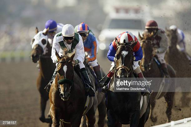 Congaree and Medaglia d'Oro compete in the $4 Million Breeders' Cup Classic Powered by Dodge part of the 2003 Breeders' Cup World Thoroughbred...