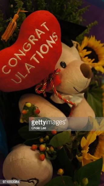 congratulations - cartoon santa claus stock photos and pictures