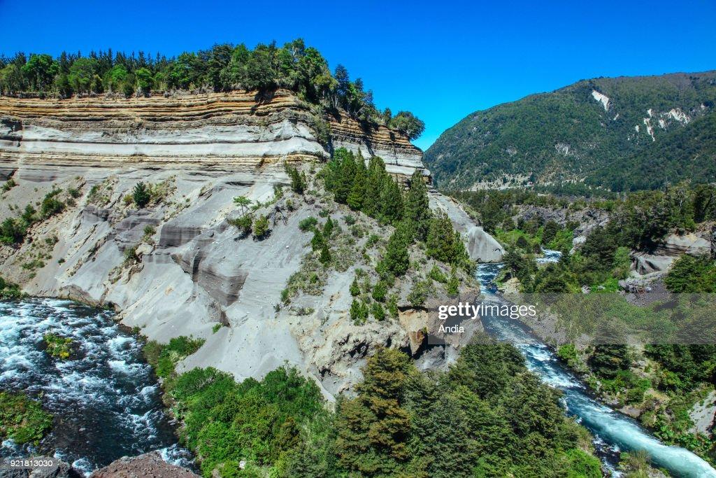 Conguillio National Park. : News Photo
