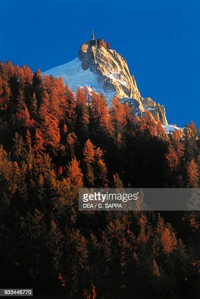 Coniferous forest in autumn in the background the cable car station of the Aiguille du Midi Mont Blanc massif AuvergneRhoneAlpes France