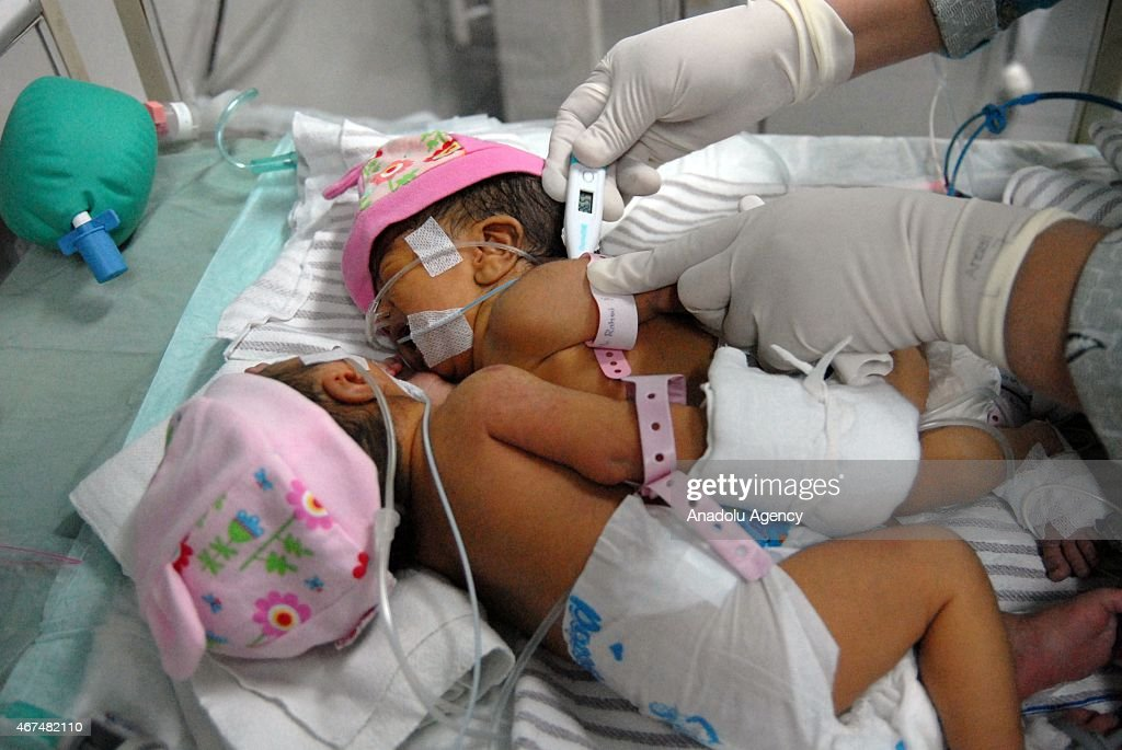 Newborn Baby Twin Boys In Hospital