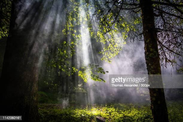 connection between heaven and earth - penetrar fotografías e imágenes de stock