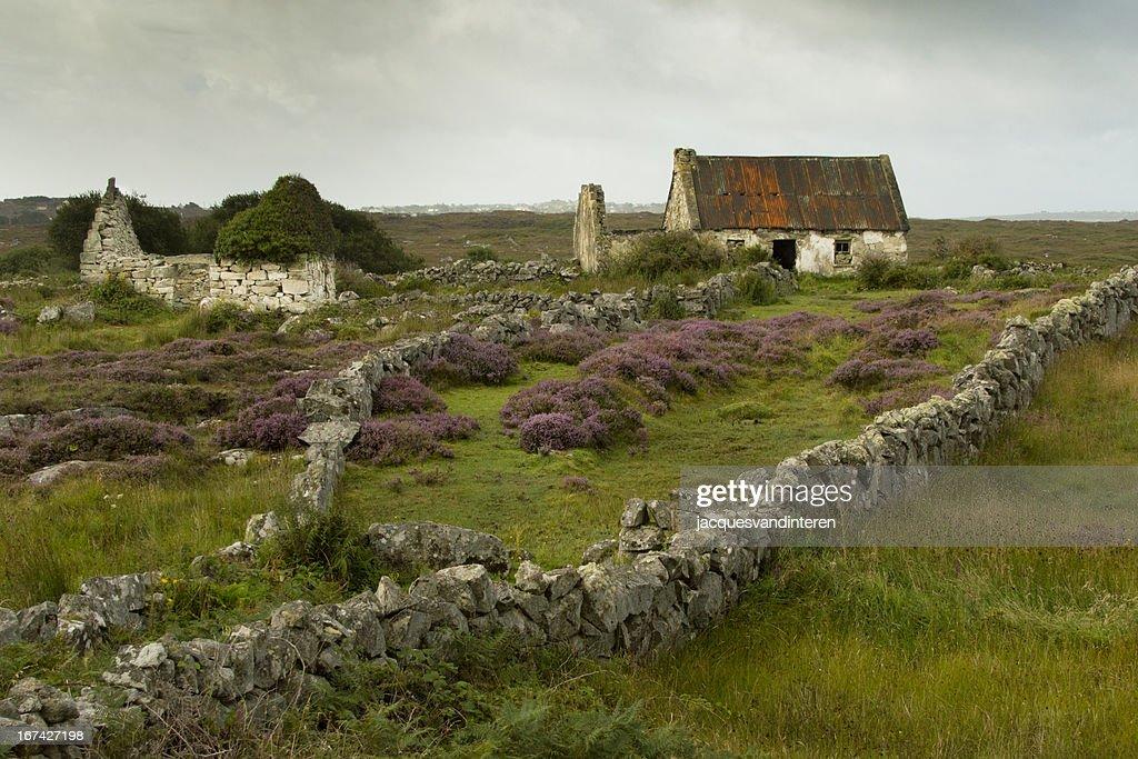 Connemara national park-Ireland : Stock-Foto