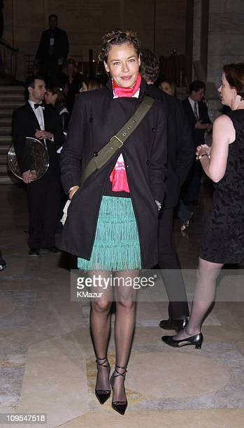 """Connie Nielsen during """"Gangs of New York"""" World Premiere - After-Party at New York City Public Library - 42nd Street in New York City, New York,..."""