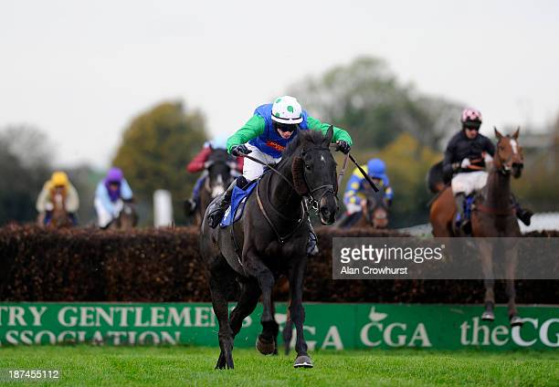 Conor O'Farrell riding Standing Ovation clear the last to win The Badger Ales Trophy at Wincanton racecourse on November 09 2013 in Wincanton England