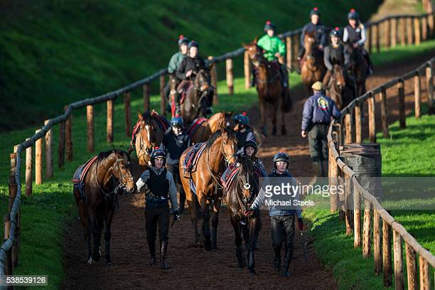 Conor Smith with Theatre Rouge walks alongside Sean Houlihan and No Comment after second lot at Sandhill Racing Stables on January 20 2016 in...