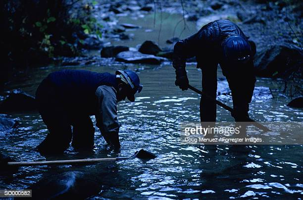 Conservation Core Members Working in a Stream