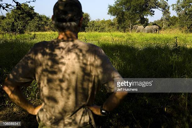 Conservationist Michael Fay watches an elephant in the distance at Zakouma National Park while trying to gauge the health of the elephant population...