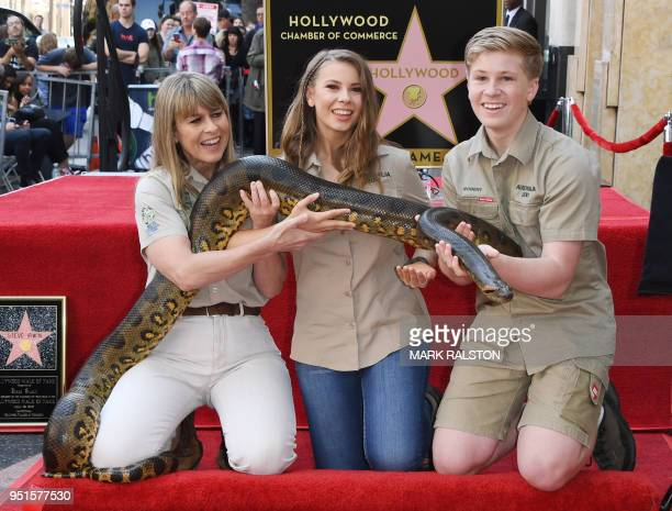Conservationists and TV personalities Terri Irwin, Bindi Irwin and Robert Irwin hold a snake near the newly unveiled star of Steve Irwin, who was...