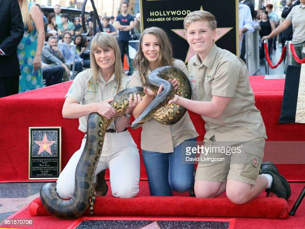 Conservationists/TV personalities Terri Irwin Bindi Irwin and Robert Irwin attend Steve Irwin being honored posthumously with a Star on the Hollywood...