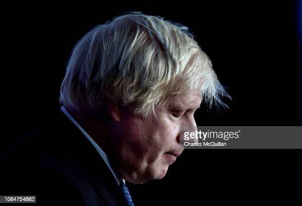 Conservative MP Boris Johnson delivers his speech during the Democratic Unionist Party annual conference at the Crown Plaza Hotel on November 24 2018...