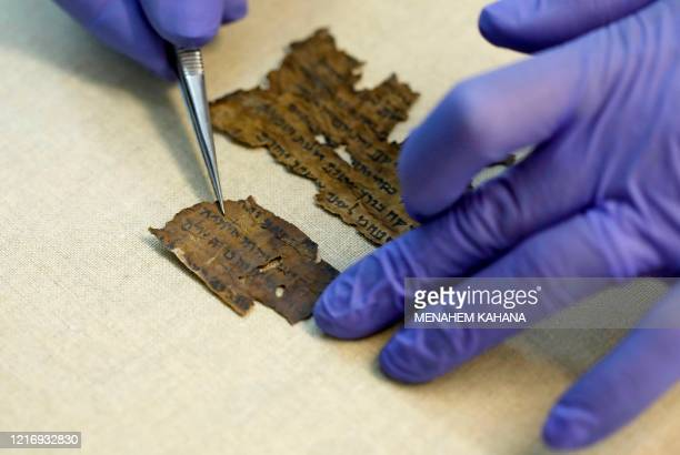 Conservator of the Israel Antiquities Authority shows fragments of the Dead Sea Scrolls at their laboratory in Jerusalem on June 2, 2020. - DNA...