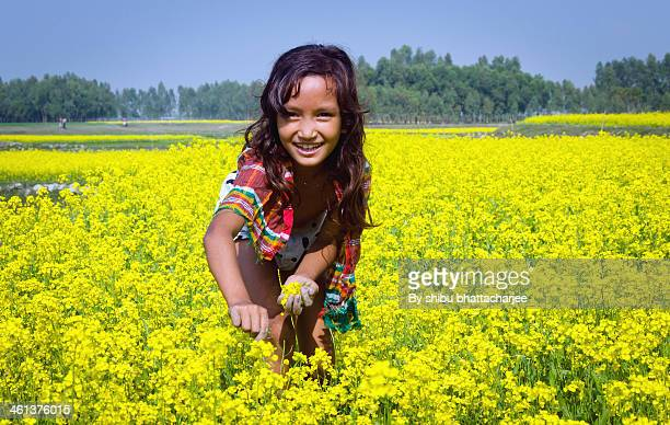 consistent with cheerful colors and nature - bangladeshi beautiful girl stock photos and pictures