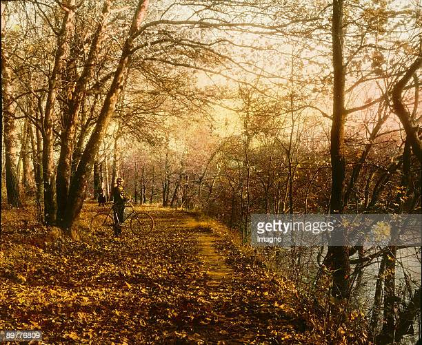 A constable with his bicycle at the Praterfloodplain forest Vienna Handcolored lantern slide Around 1905