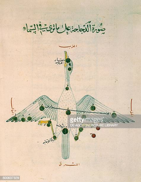 Constellation from the Book of the constellations and fixed stars by the Arabic astronomer Abd alRahman alSufi Arabic manuscript parchment 13th...