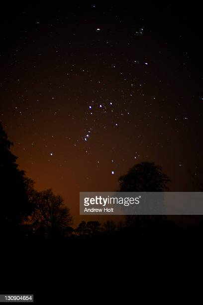 constellation of orion - constellation stock pictures, royalty-free photos & images