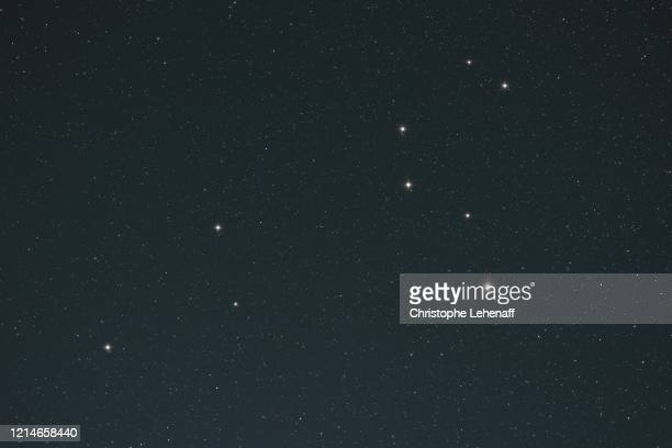 constellation of the lion (leo) seen with the naked eye - lion stock pictures, royalty-free photos & images
