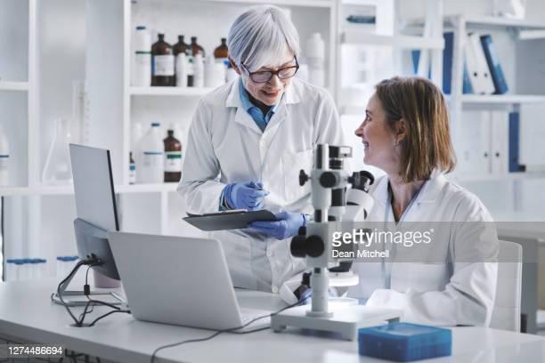 aufbau einer hypothese auf der grundlage ihrer forschung - wissenschaftlerin stock-fotos und bilder