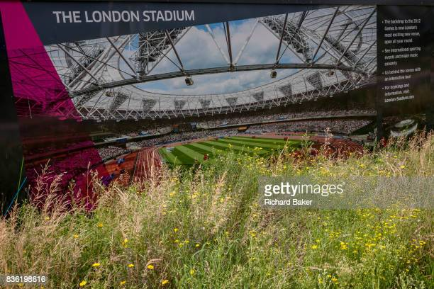A construction hoarding featuring the London Stadium once known as the Olympic stadium during the 2012 Olympiad on 16th August 2017 in the Queen...