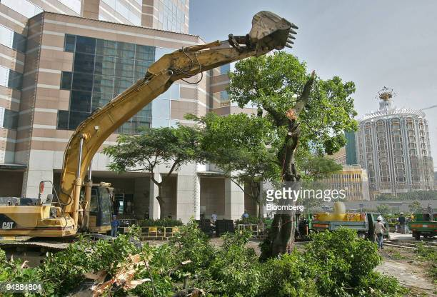 Construction machinery removes oldgrowth trees Friday November 18 2005 to make way for more casinos and hotels in Macau China As Macau gets set to...