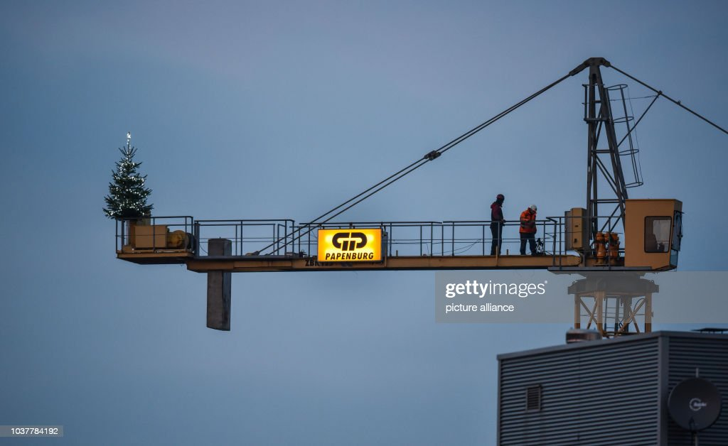 Christmas tree at construction site Pictures | Getty Images