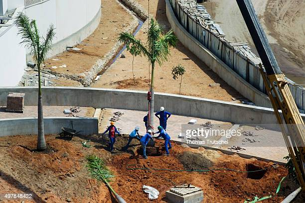 Construction workers plant palms on the construction site of a luxury hotel on November 19 2015 in Maputo Mozambique