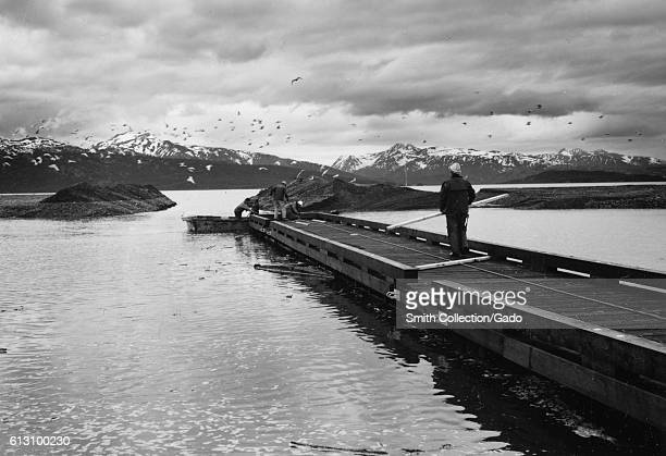 Construction workers work on a dock in Homer Alaska 1964