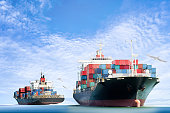 Container Cargo ship in the ocean with Birds flying