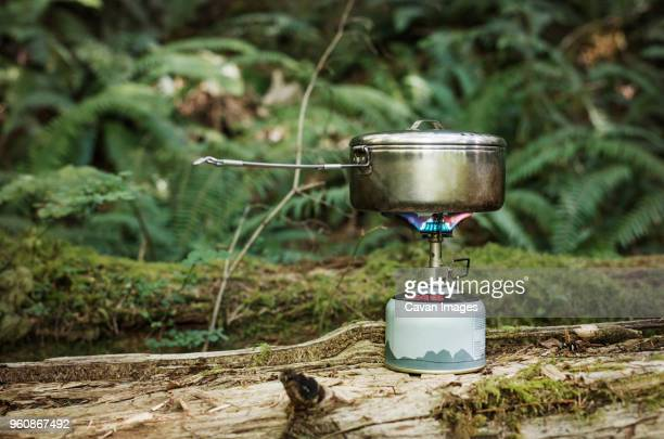 Container over camping stove on log at forest