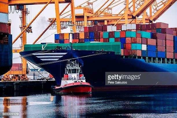Container ship and tugboat in harbor, Tacoma, Washington, USA