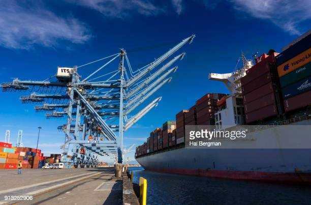 Container Ship Arriving